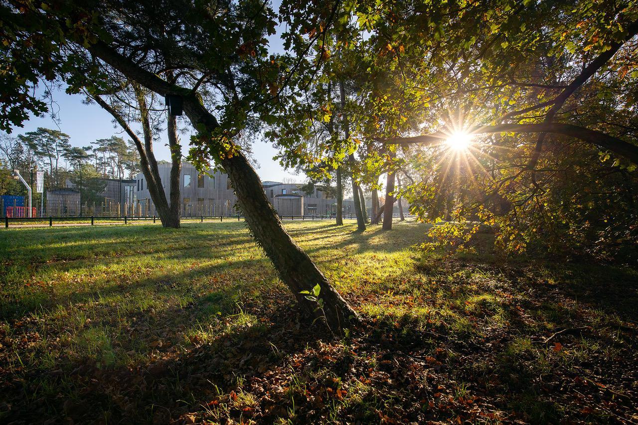 Herfst 2020 (foto: Maarten van Haaff)